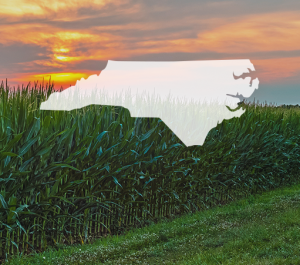 NC Grower Region